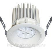 LED-N53 фото
