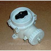 Выключатель с розеткой РШВ 2-41 фото