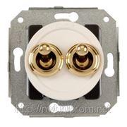 Двухклавишный выключатель белый/золото фото