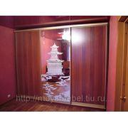 Шкаф-купе арт№017 фото