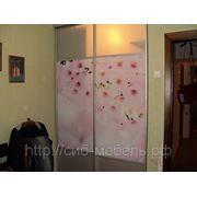 Гардеробные комнаты фото