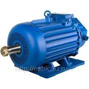 Электродвигатель крановый MTF(H) 412-6 (h-225); 30 кВт/965 фото