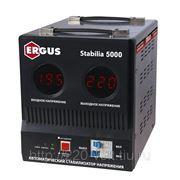 Стабилизатор Ergus Stabilia 5000 фото
