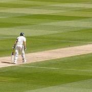Аксессуары для крикета фото