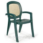Кресло Gamma фото