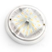 Светодиодный светильник для ЖКХ Diora 6 фото