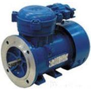 Электродвигатель взрывозащищенный АИМ132МВ8 4 х 700 фото