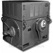 Электродвигатель общепромышленный А4-355Х-4У3 315х1500 (6000В) фото