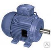 Электродвигатель 2.2/1000 АИР 100L6 фото
