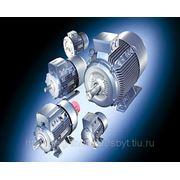 Электродвигатель АИР50 0,12кВт 3000 об/мин фото
