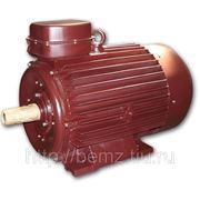 Электродвигатель 5AM 315M 2У2 фото