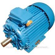 Электродвигатель 5АМ 250М 4У3 фото