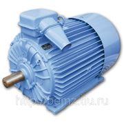 Электродвигатель АО4-355У-4ухл3 фото