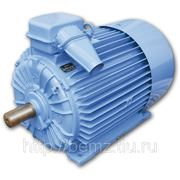 Электродвигатель АО4-355M-4у2 фото
