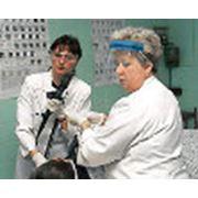 Исследование эндоскопическое фото