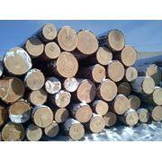 Распиловка древесины под заказ услуги по распиловке Смоленск перегрузка грузов из ж/д в автотранспорт таможенное оформление фото