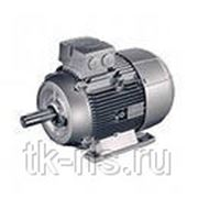 1LE1002-1BB22-2AA4 НИЗКОВОЛЬТ. К.З. Двигатель, IEC к.з. двигатель, Самоохлажд. ,IP55 Температ. класс155(F) В соотв. с 130(B) Алюминиевый корпус фото