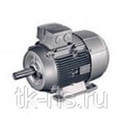 1LE1002-1CB03-4FB4 НИЗКОВОЛЬТ. К.З. Двигатель, IEC к.з. двигатель, Самоохлажд. ,IP55 Температ. класс155(F) В соотв. с 130(B) Алюминиевый корпус фото