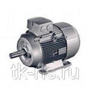 1LE1002-1DB42-2FA4 НИЗКОВОЛЬТ. К.З. Двигатель, IEC к.з. двигатель, Самоохлажд. ,IP55 Температ. класс155(F) В соотв. с 130(B) Алюминиевый корпус фото