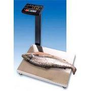 Весы электронные влагозащищенные МК 15.2-АВ20 фото