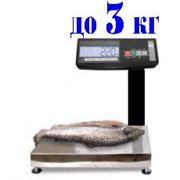 МК-3.2-АВ11 весы влагозащищенные с автономным питанием фотография