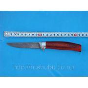 Нож «Тунец» клинок из дамасской стали рукоять: падук фото