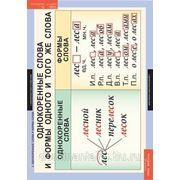 Комплект таблиц «Русский язык 2 класс» (4 таблицы) фото