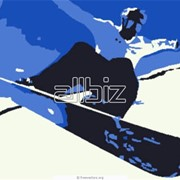 Сноуборды фото