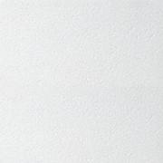 Потолочная плита Armstrong BIOGUARD PLAIN 600х600х12 Вoard фото