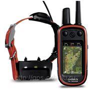 Навигатор для владельцев собак Garmin Alpha 100 фото