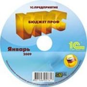 ИТС. Бюджет.Проф , DVD, подписка на 6 мес. фото