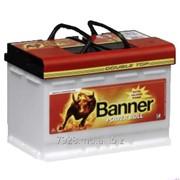 Аккумулятор Banner Power Bull Professional 75Ah фото