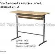 Стол ученический 2-местный с полкой и царгой, разноуровневый СТР-2, 22004 фото