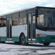 Автобус Волжанин 5270 фото