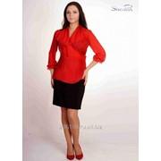 Блуза 6503 Красный цвет фото