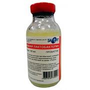 Лактобактерин жидкий фото