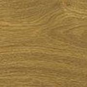 Замковый пробковый пол Corkstyle, WOOD XL, Oak knotty (1235х200х11 мм) упак. 1,48м2 фото