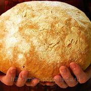 "Курс ""Хлеб"" фото"