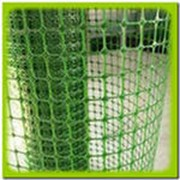 Сетка заборная для вьющихся растений. фото