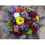 фото предложения ID 330985
