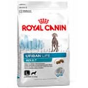 Корм для собак Royal Canin Urban Life Adult Large Dog фото