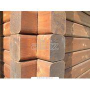 Антигрибковая обработка древесины фото