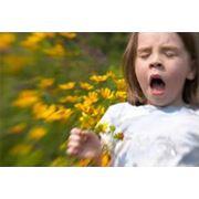 Лечение аллергии биорезонансом фото