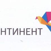 Комплект Континент, Спутниковые телевизионные системы фото