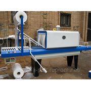 Упаковочная машина ТПЦ — АП 550Р (блочная упаковка): упаковочное оборудование. фото