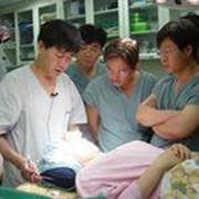 Базисное обследование онкологических заболеваний фото