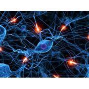 Консультация невропатолога фото