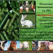 Травяная мука (гранулир.) фото