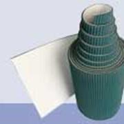 Конвейерные и транспортерные пластиковые ленты фото