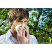 Кожная аллергия фото